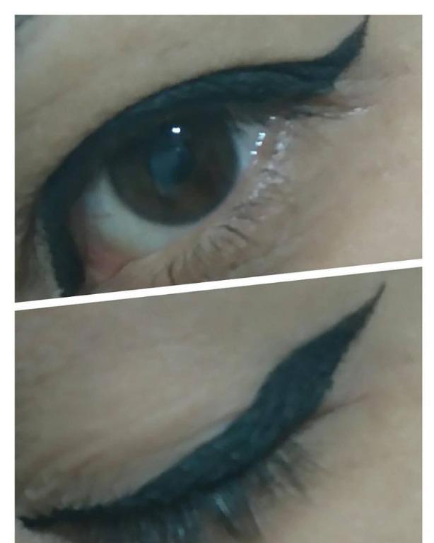 #delineadogatinho designer de sobrancelhas micropigmentador(a)