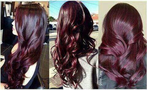 borgonha,  cabelo  cabeleireiro(a) hair style
