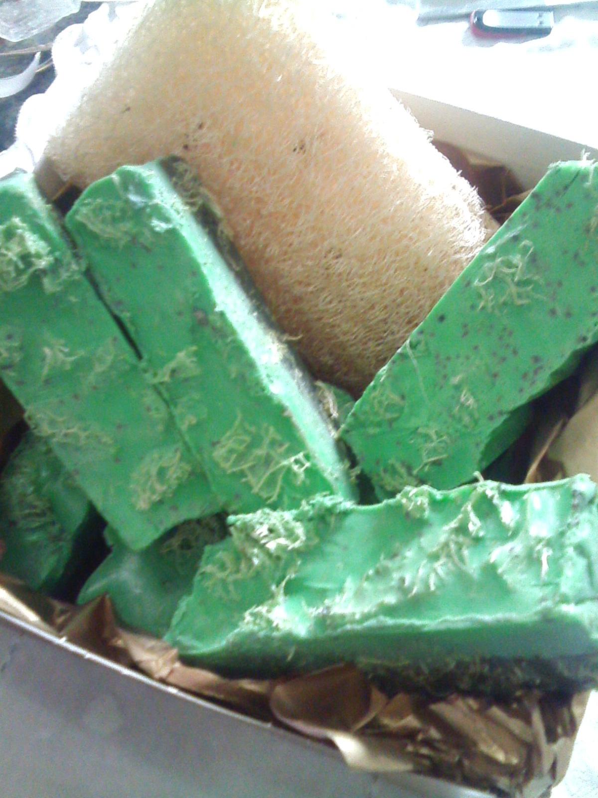 Sabonete Corporal, esfoliante com bucha vegetal para redução de medidas e celulite. outros esteticista