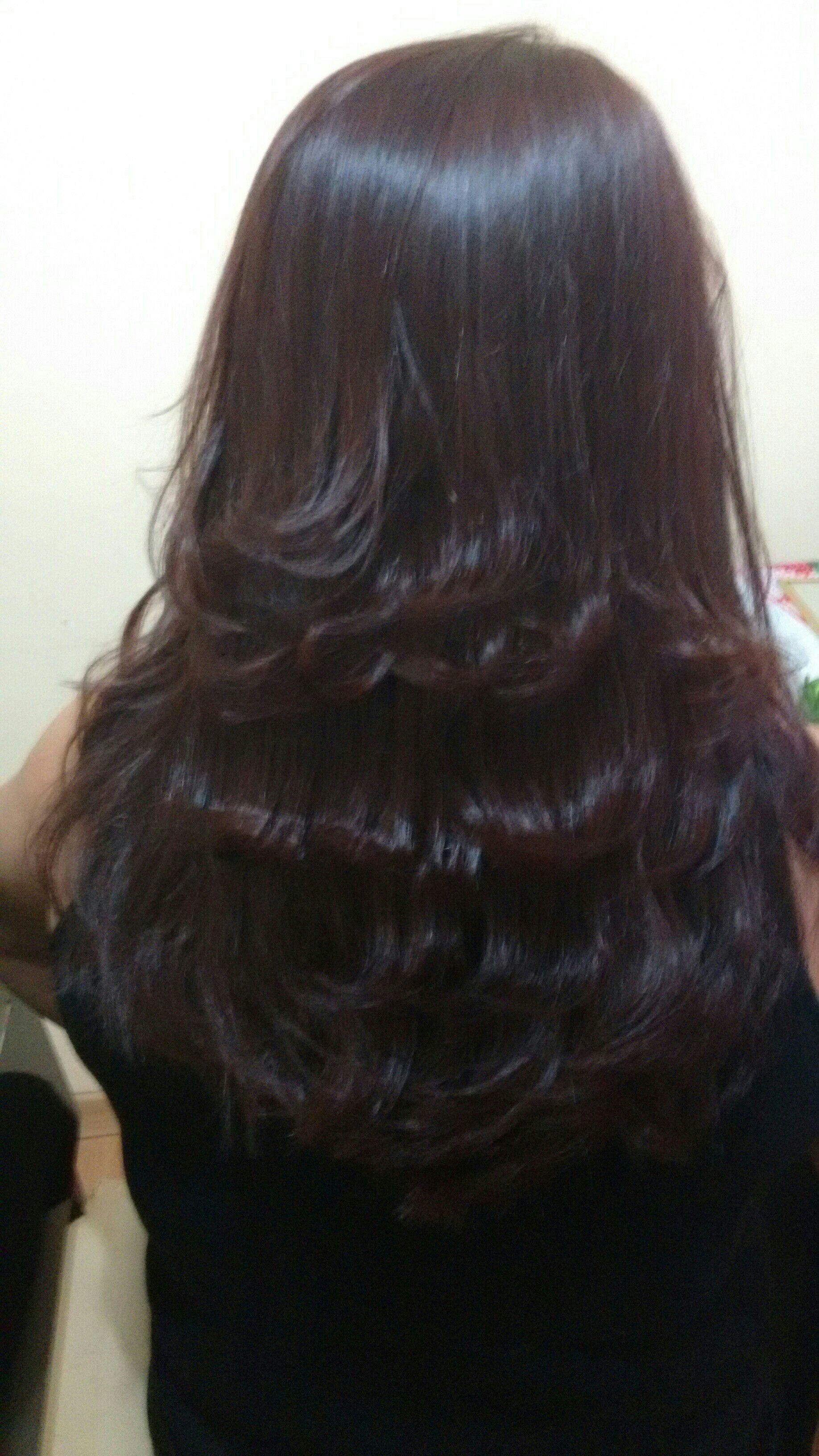 Corte, escova, aplicação de tintura 6.0 + 7.1 cliente tinha 50 por cento de cabelos brancos cabelo cabeleireiro(a)