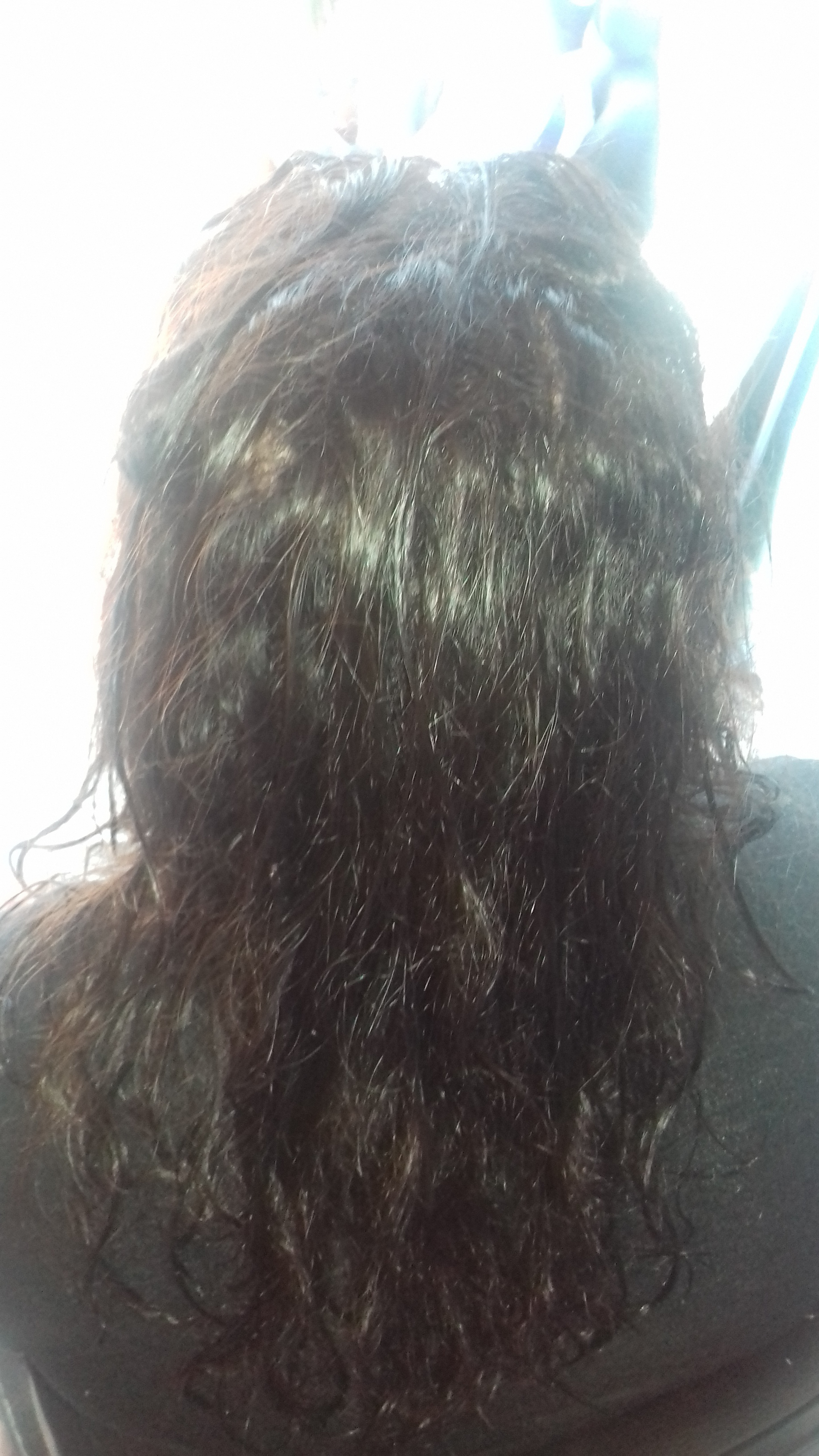 antes da progressiva cabelo cabeleireiro(a) auxiliar cabeleireiro(a)