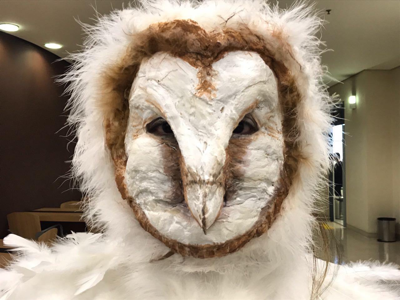 Maquiagem artística de coruja 🦉  maquiagem maquiador(a) auxiliar cabeleireiro(a)