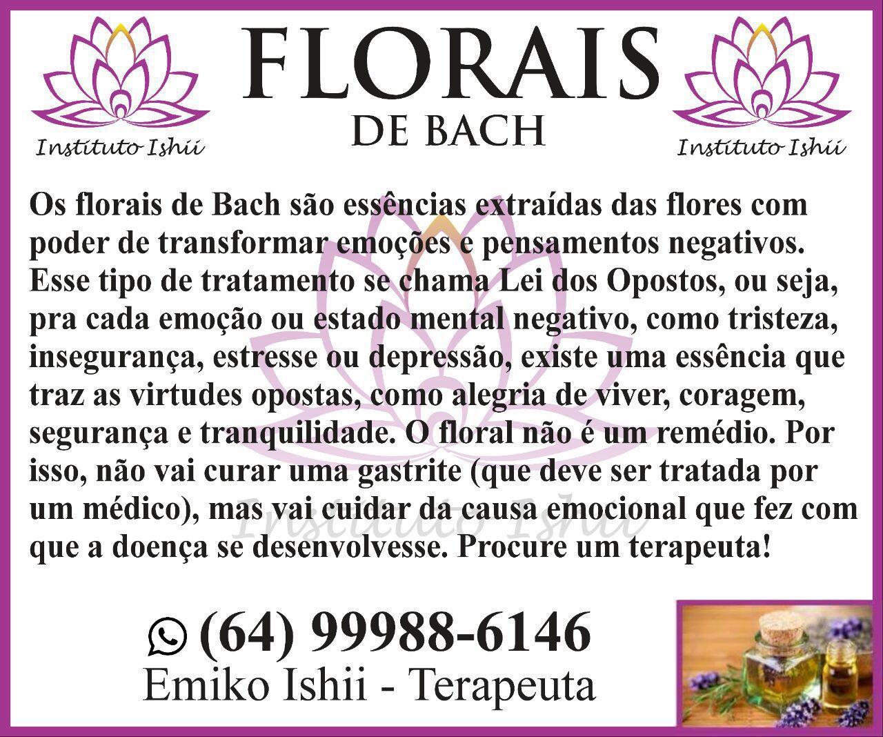 terapeuta aromaterapeuta massagista outros vendedor(a)