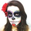 Maquiagem artística - caveira mexicana