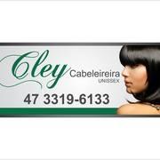 cley ribeiro